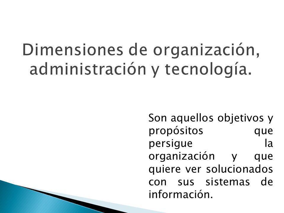 Son aquellos objetivos y propósitos que persigue la organización y que quiere ver solucionados con sus sistemas de información.