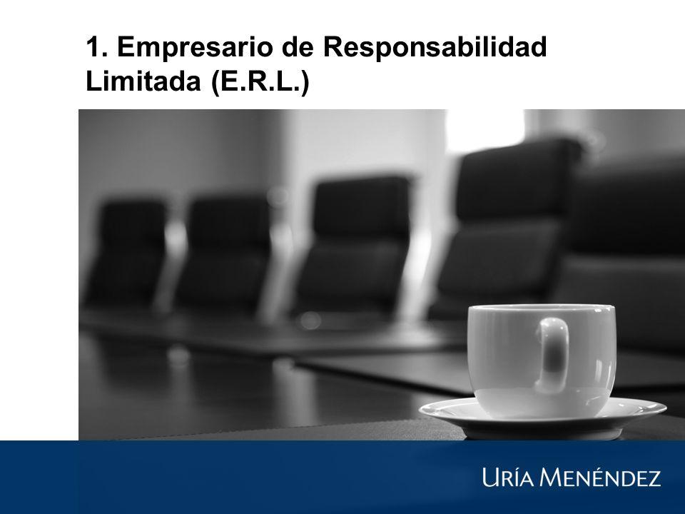 1. Empresario de Responsabilidad Limitada (E.R.L.)