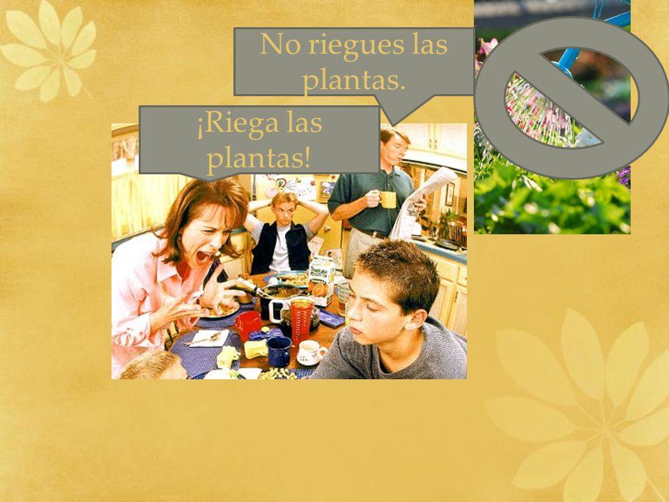 ¡Riega las plantas! No riegues las plantas.