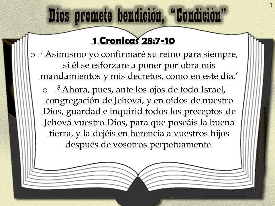 1 Cronicas 28:7-10 o 7 Asimismo yo confirmaré su reino para siempre, si él se esforzare a poner por obra mis mandamientos y mis decretos, como en este
