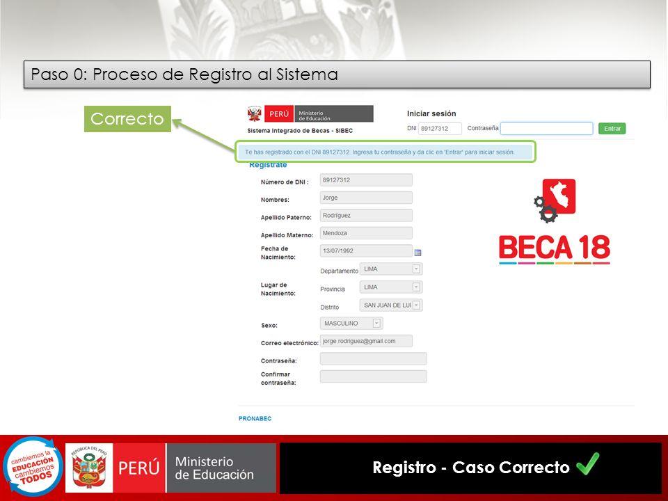 Registro - Caso Correcto Paso 0: Proceso de Registro al Sistema Correcto