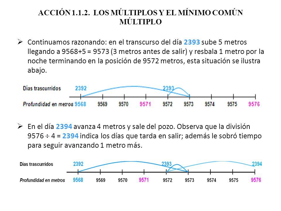 ACCIÓN 1.1.2. LOS MÚLTIPLOS Y EL MÍNIMO COMÚN MÚLTIPLO Continuamos razonando: en el transcurso del día 2393 sube 5 metros llegando a 9568+5 = 9573 (3