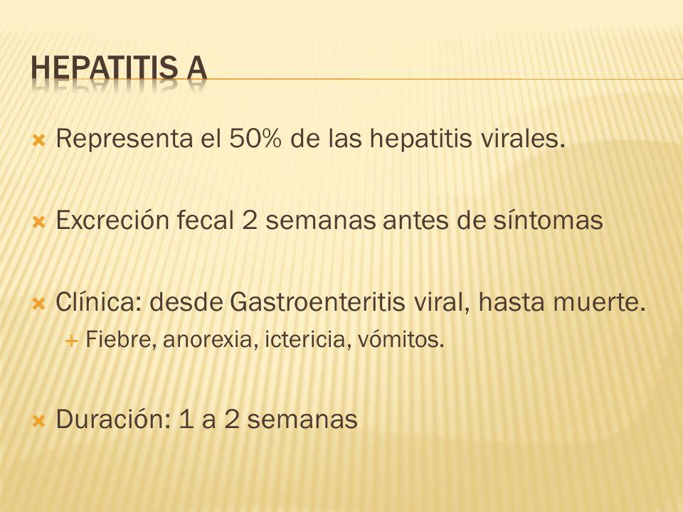 Representa el 50% de las hepatitis virales. Excreción fecal 2 semanas antes de síntomas Clínica: desde Gastroenteritis viral, hasta muerte. Fiebre, an