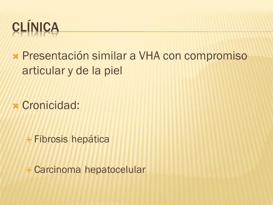 Presentación similar a VHA con compromiso articular y de la piel Cronicidad: Fibrosis hepática Carcinoma hepatocelular
