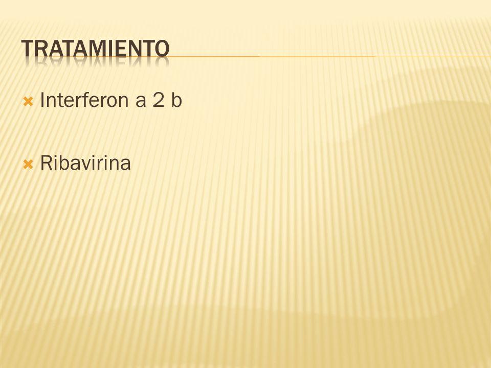 Interferon a 2 b Ribavirina