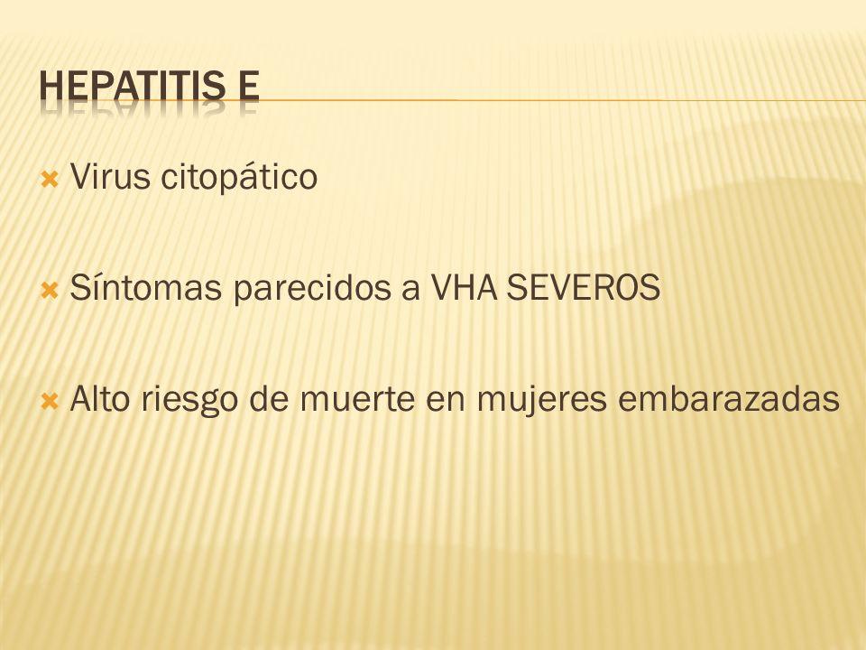 Virus citopático Síntomas parecidos a VHA SEVEROS Alto riesgo de muerte en mujeres embarazadas
