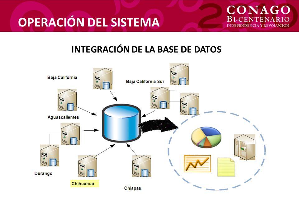 OPERACIÓN DEL SISTEMA INTEGRACIÓN DE LA BASE DE DATOS