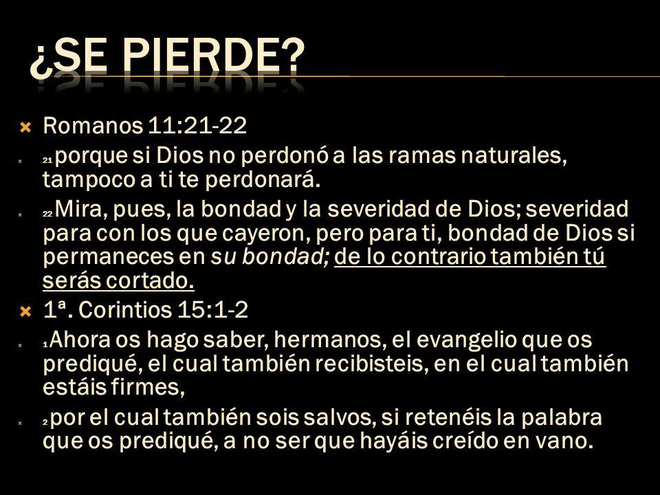 Romanos 11:21-22 21 porque si Dios no perdonó a las ramas naturales, tampoco a ti te perdonará. 22 Mira, pues, la bondad y la severidad de Dios; sever