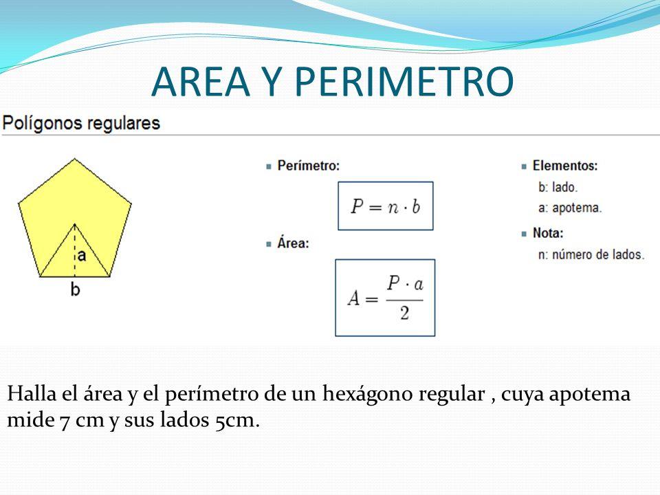 AREA Y PERIMETRO Halla el área y el perímetro de un hexágono regular, cuya apotema mide 7 cm y sus lados 5cm.