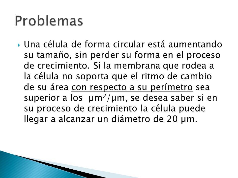 Una célula de forma circular está aumentando su tamaño, sin perder su forma en el proceso de crecimiento.