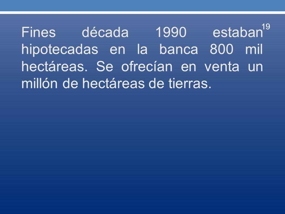 Fines década 1990 estaban hipotecadas en la banca 800 mil hectáreas. Se ofrecían en venta un millón de hectáreas de tierras. 19