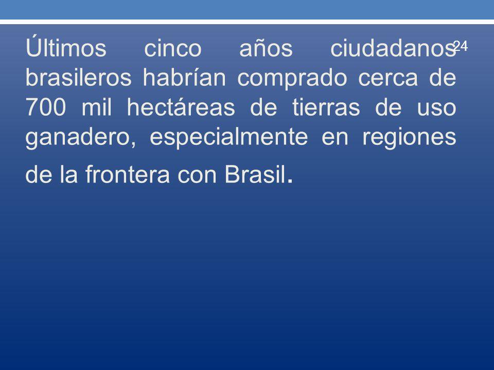 Últimos cinco años ciudadanos brasileros habrían comprado cerca de 700 mil hectáreas de tierras de uso ganadero, especialmente en regiones de la front