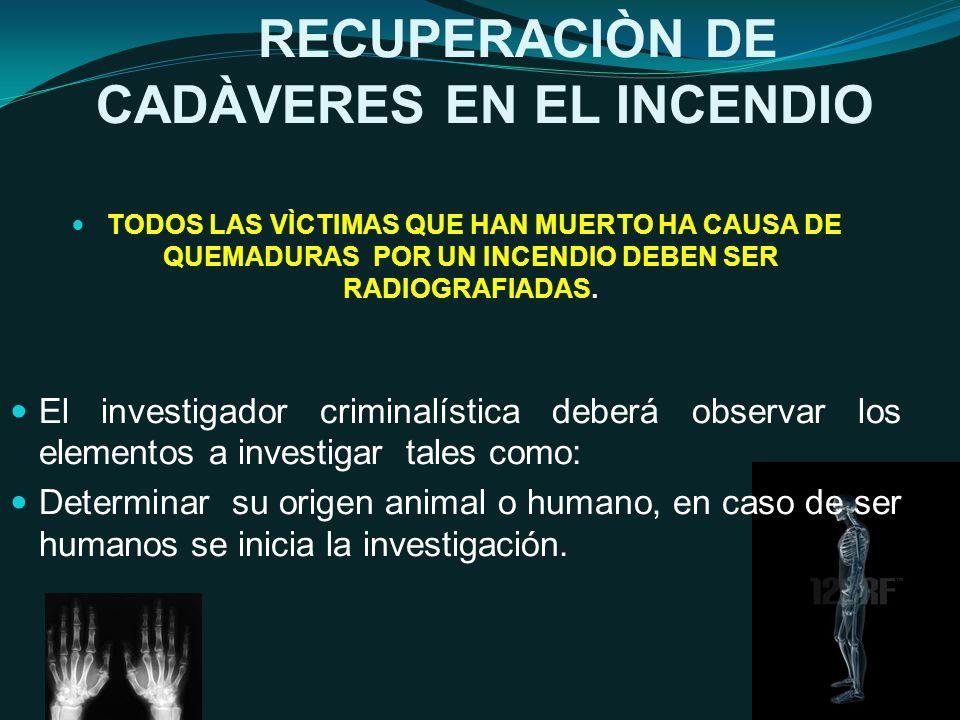 RECUPERACIÒN DE CADÀVERES EN EL INCENDIO TODOS LAS VÌCTIMAS QUE HAN MUERTO HA CAUSA DE QUEMADURAS POR UN INCENDIO DEBEN SER RADIOGRAFIADAS.