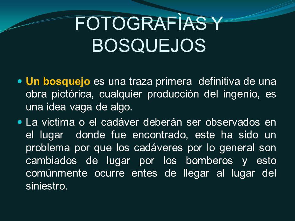 FOTOGRAFÌAS Y BOSQUEJOS Un bosquejo es una traza primera definitiva de una obra pictórica, cualquier producción del ingenio, es una idea vaga de algo.