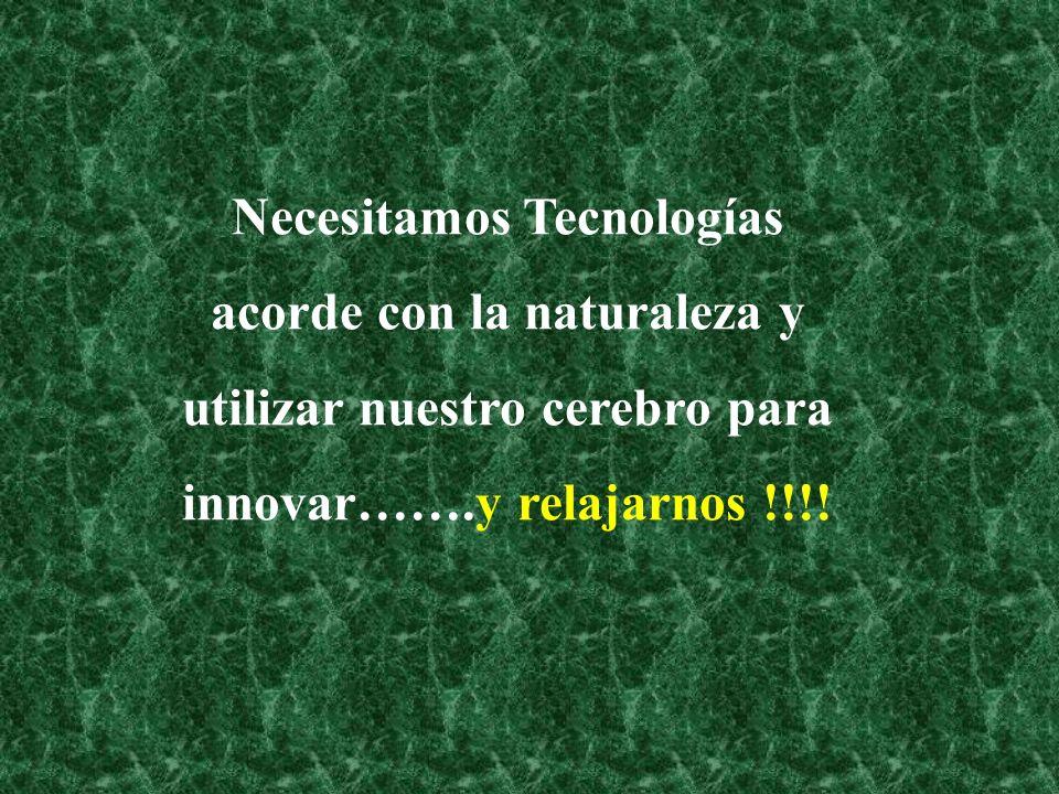 Necesitamos Tecnologías acorde con la naturaleza y utilizar nuestro cerebro para innovar…….y relajarnos !!!!