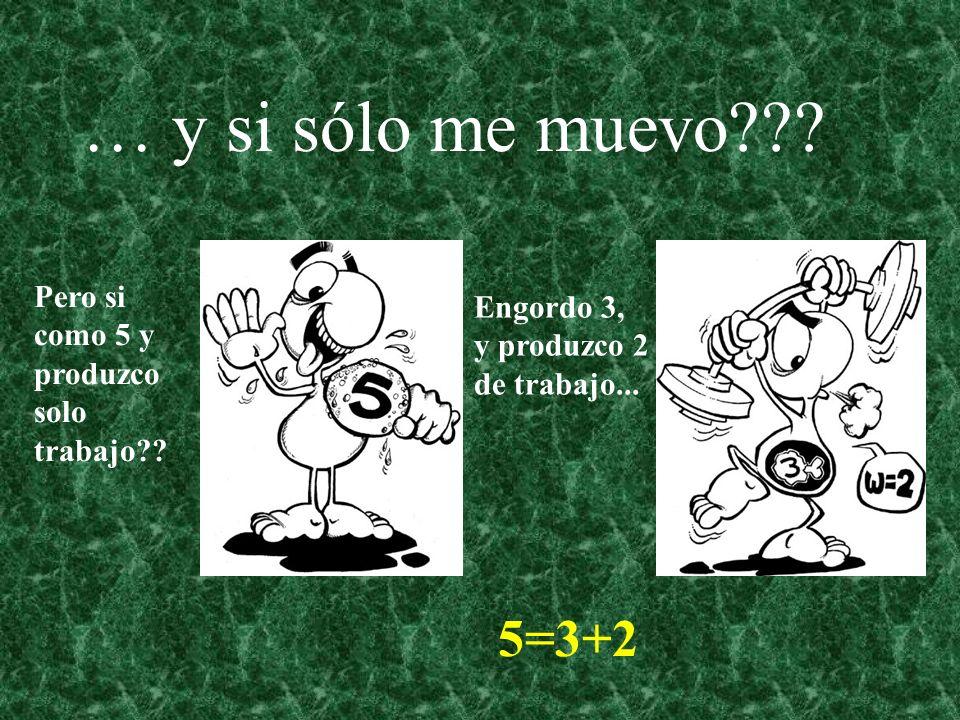 … y si sólo me muevo??? Pero si como 5 y produzco solo trabajo?? Engordo 3, y produzco 2 de trabajo... 5=3+2