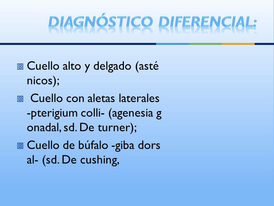 Cuello alto y delgado (asté nicos); Cuello con aletas laterales -pterigium colli- (agenesia g onadal, sd. De turner); Cuello de búfalo -giba dors al-