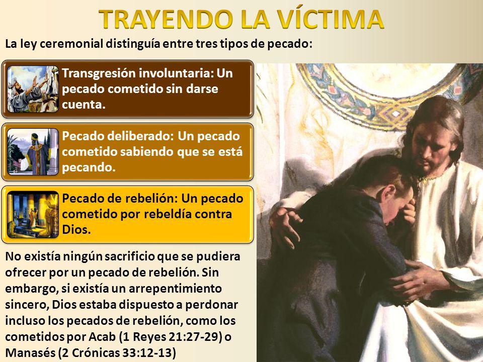 El pecador arrepentido debía presentarse en el Santuario con una víctima.