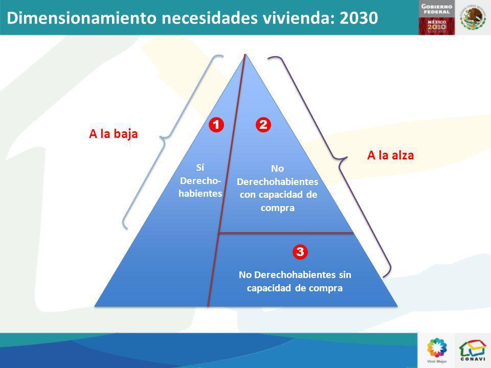 Sí Derecho- habientes No Derechohabientes con capacidad de compra No Derechohabientes sin capacidad de compra A la baja A la alza 12 3 Dimensionamient