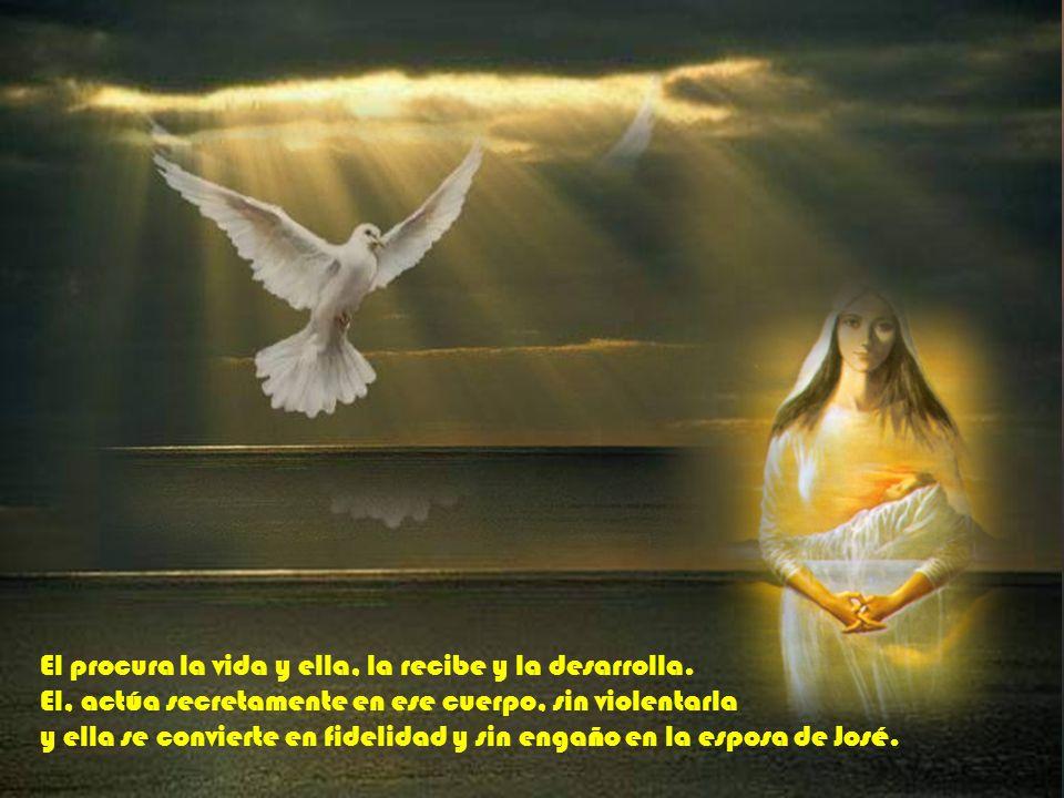 El, el Espíritu viene de dios y actúa en su nombre. Ella, la virgen, pertenece a la humanidad y ofrece su cuerpo