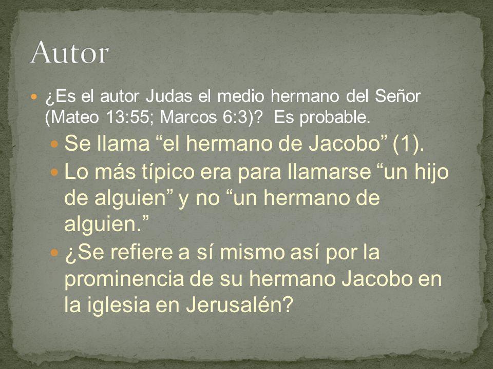 ¿Es el autor Judas el medio hermano del Señor (Mateo 13:55; Marcos 6:3).