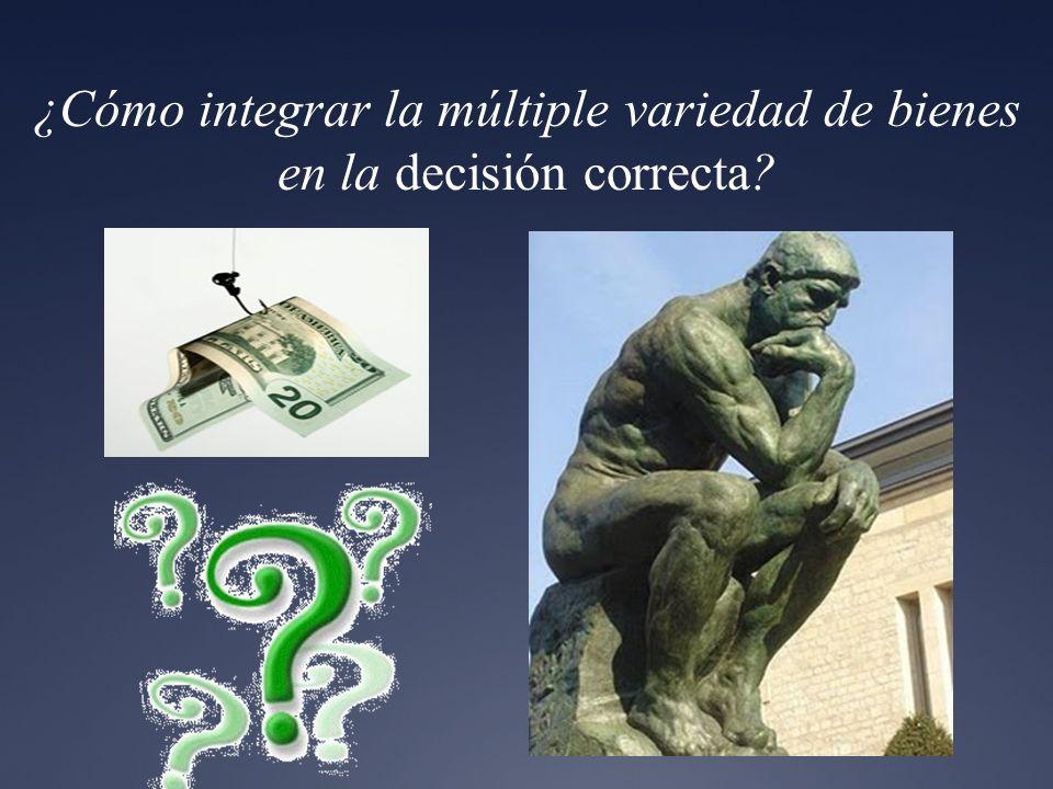 ¿Cómo integrar la múltiple variedad de bienes en la decisión correcta?