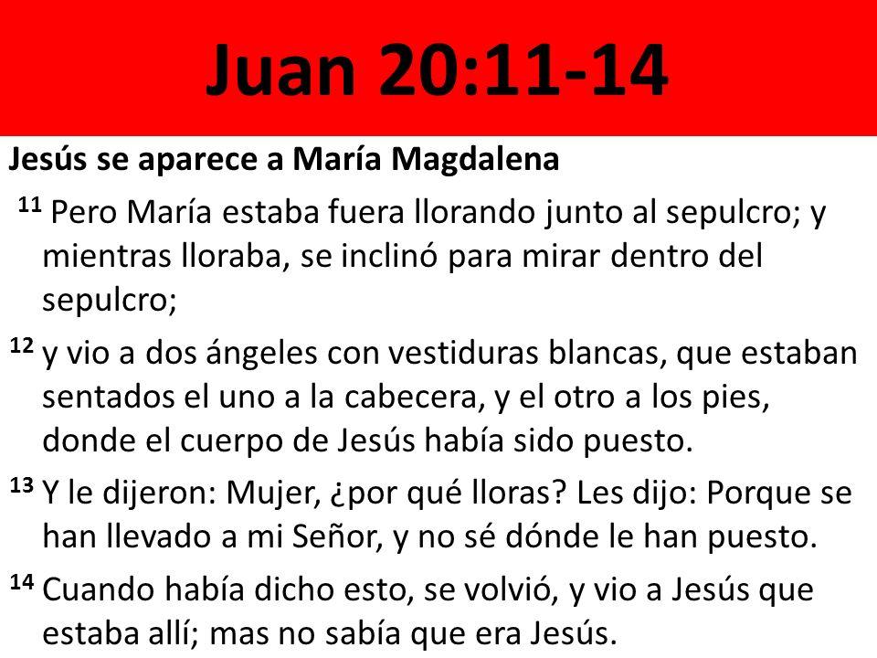 Juan 20:11-14 Jesús se aparece a María Magdalena 11 Pero María estaba fuera llorando junto al sepulcro; y mientras lloraba, se inclinó para mirar dentro del sepulcro; 12 y vio a dos ángeles con vestiduras blancas, que estaban sentados el uno a la cabecera, y el otro a los pies, donde el cuerpo de Jesús había sido puesto.
