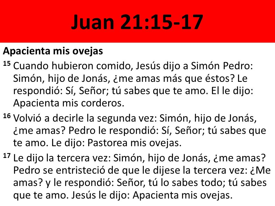 Juan 21:15-17 Apacienta mis ovejas 15 Cuando hubieron comido, Jesús dijo a Simón Pedro: Simón, hijo de Jonás, ¿me amas más que éstos? Le respondió: Sí