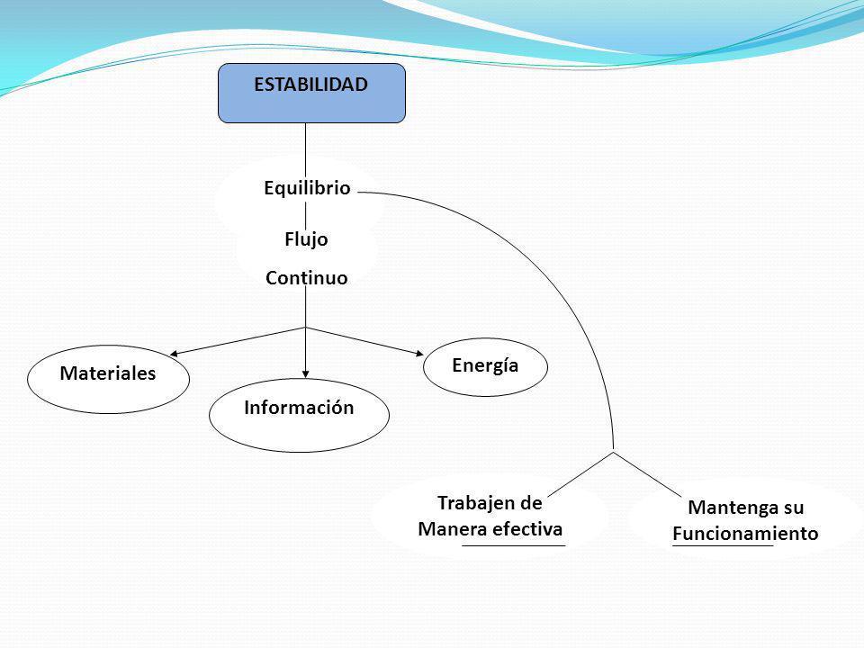 ESTABILIDAD Equilibrio Flujo Continuo Información Energía Materiales Mantenga su Funcionamiento Trabajen de Manera efectiva