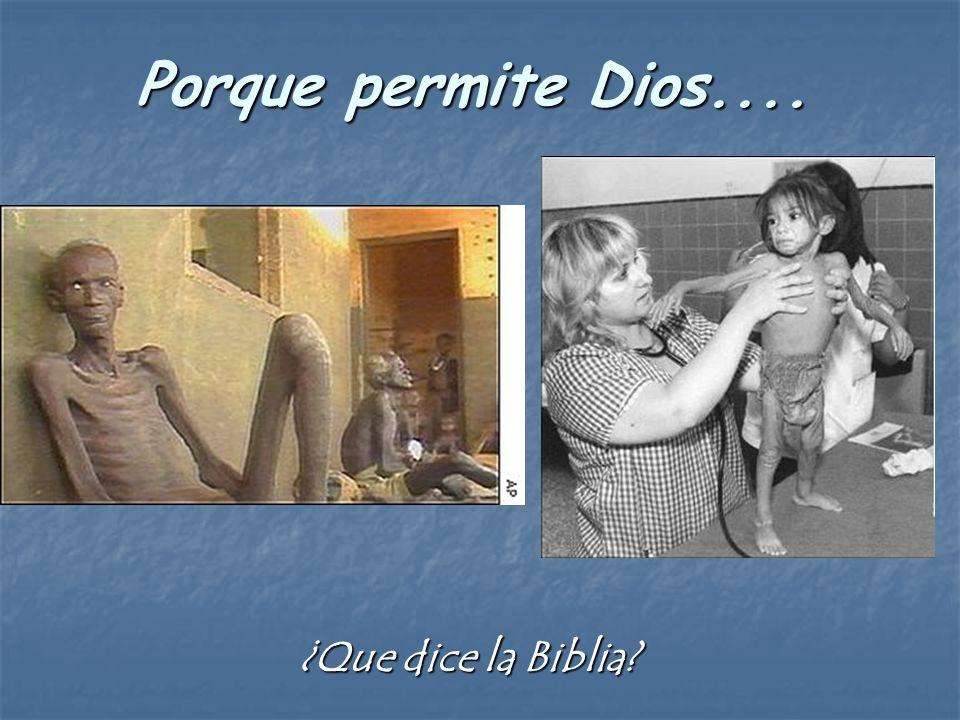 Porque permite Dios.... ¿Que dice la Biblia?