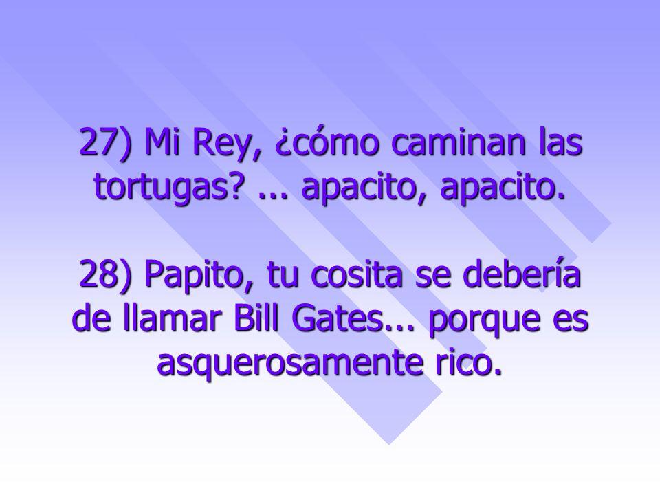 27) Mi Rey, ¿cómo caminan las tortugas?... apacito, apacito. 28) Papito, tu cosita se debería de llamar Bill Gates... porque es asquerosamente rico.