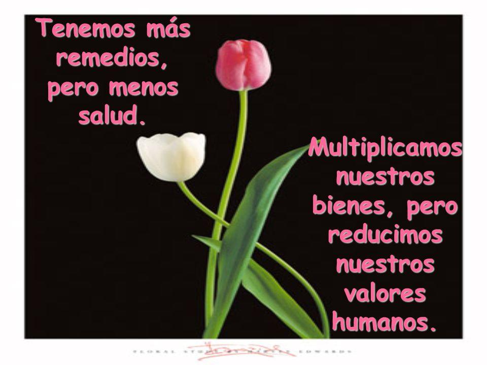 Multiplicamos nuestros bienes, pero reducimos nuestros valores humanos.