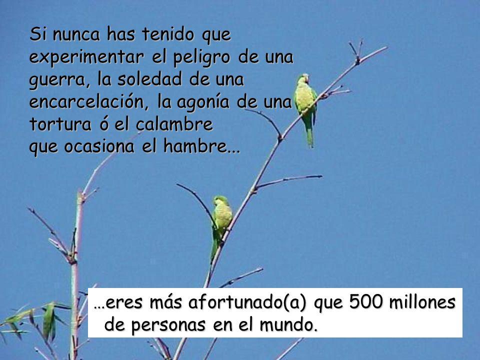 …eres más afortunado(a) que 500 millones de personas en el mundo. de personas en el mundo. Si nunca has tenido que experimentar el peligro de una guer