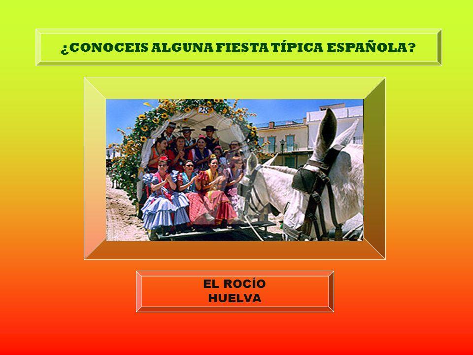 ¿CONOCEIS ALGUNA FIESTA TÍPICA ESPAÑOLA? LOS SANFERMINES PAMPLONA LA FERIA DE ABRIL SEVILLA LA TOMATINA BUNYOL (VALENCIA) LOS CARNAVALES TENERIFE, CÁD