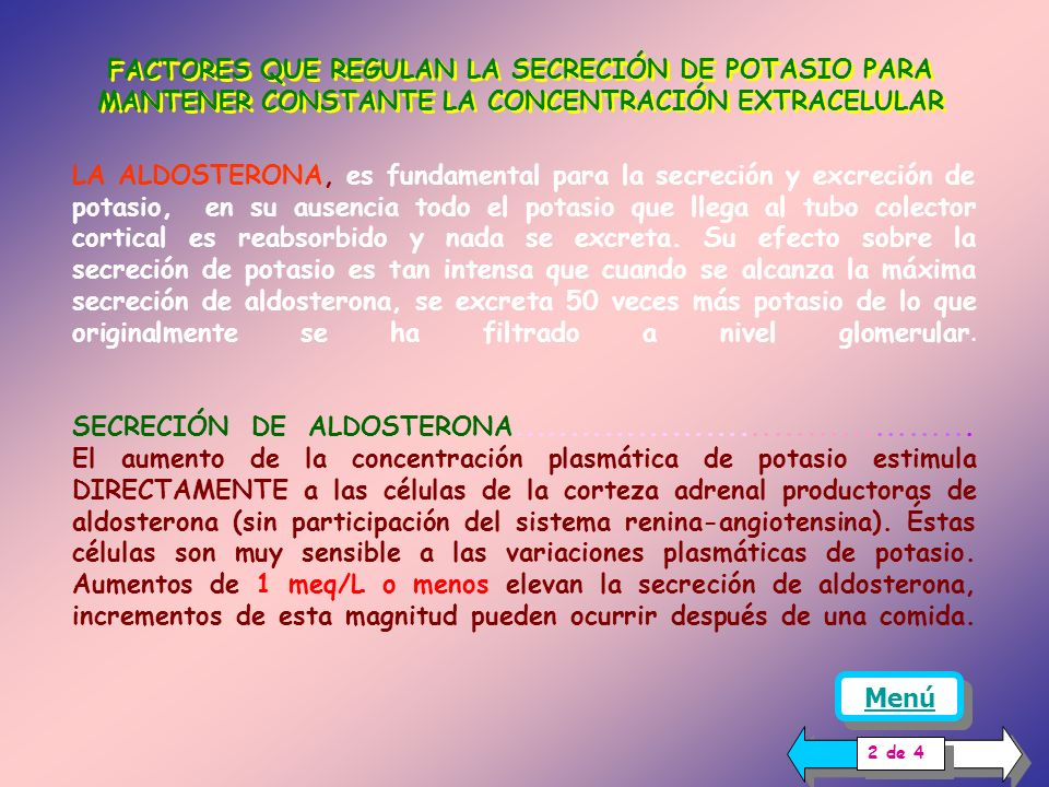 capilar Luz tubular Célula tubular Bomba Na + -K + ATPasa SECRECIÓNSECRECIÓN Las dietas con alto contenido de potasio producen un aumento de la concentración plasmática.