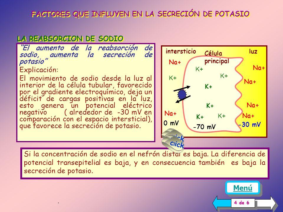 EXPLICACIÓN Cuando la concentración plasmática de potasio es normal pero la ingesta de sodio es baja, se libera aldosterona vía sistema renina-angiote