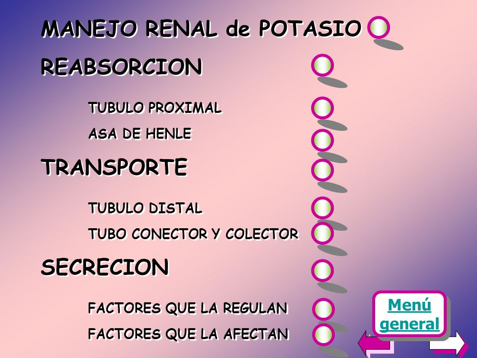 MANEJO RENAL de POTASIO REABSORCION TUBULO PROXIMAL ASA DE HENLE TRANSPORTE TUBULO DISTAL TUBO CONECTOR Y COLECTOR SECRECION FACTORES QUE LA REGULAN FACTORES QUE LA AFECTAN MANEJO RENAL de POTASIO REABSORCION TUBULO PROXIMAL ASA DE HENLE TRANSPORTE TUBULO DISTAL TUBO CONECTOR Y COLECTOR SECRECION FACTORES QUE LA REGULAN FACTORES QUE LA AFECTAN Menú general Menú general