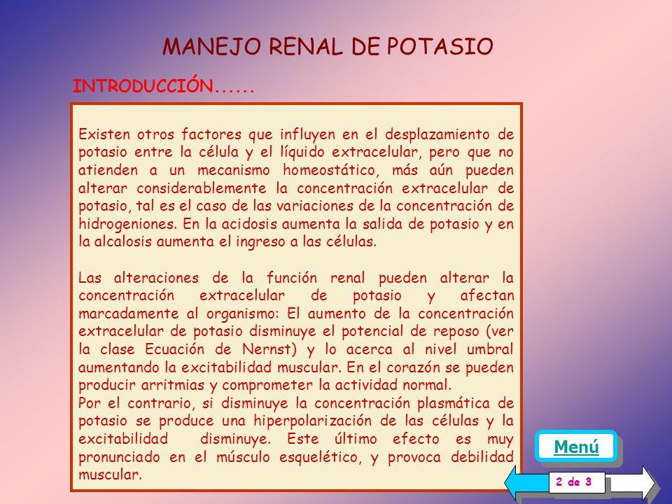 INTRODUCCIÓN En condiciones normales, la concentración extracelular de potasio se mantiene constante. Los riñones participan igualando la excreción di