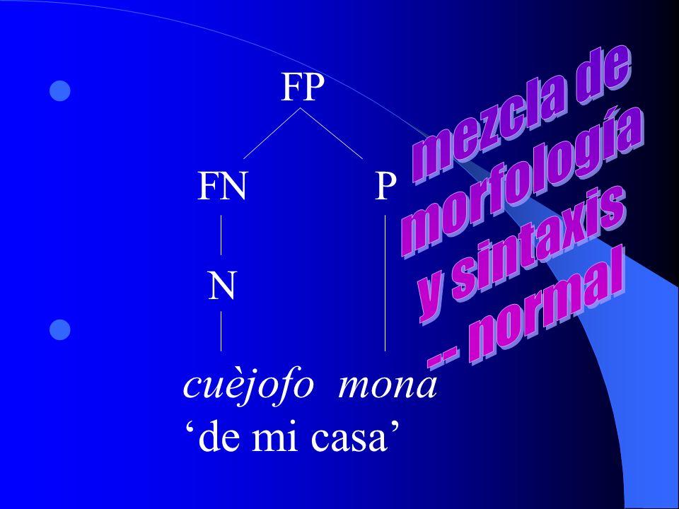 cuèjofo mona de mi casa FP FN P N