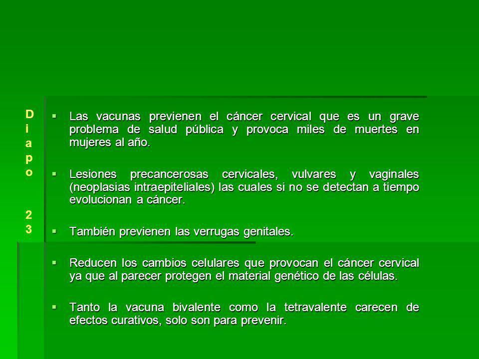 Las vacunas previenen el cáncer cervical que es un grave problema de salud pública y provoca miles de muertes en mujeres al año.