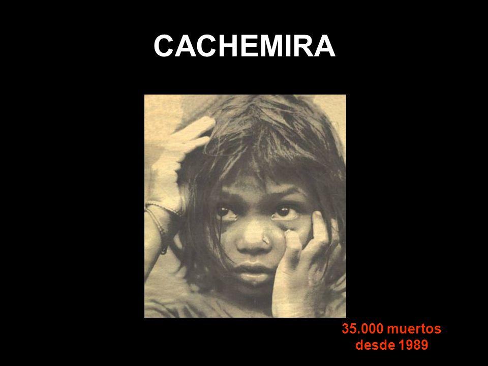 CACHEMIRA 35.000 muertos desde 1989