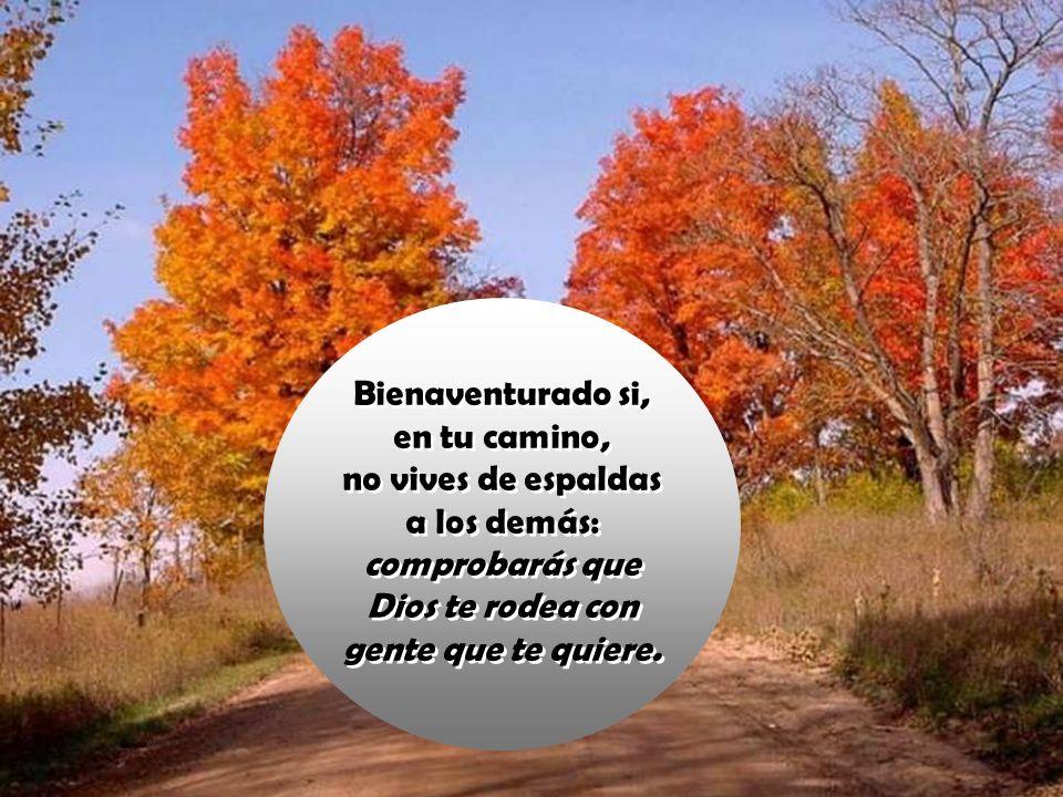 Bienaventurado si, en tu camino, no vives de espaldas a los demás: comprobarás que Dios te rodea con gente que te quiere.