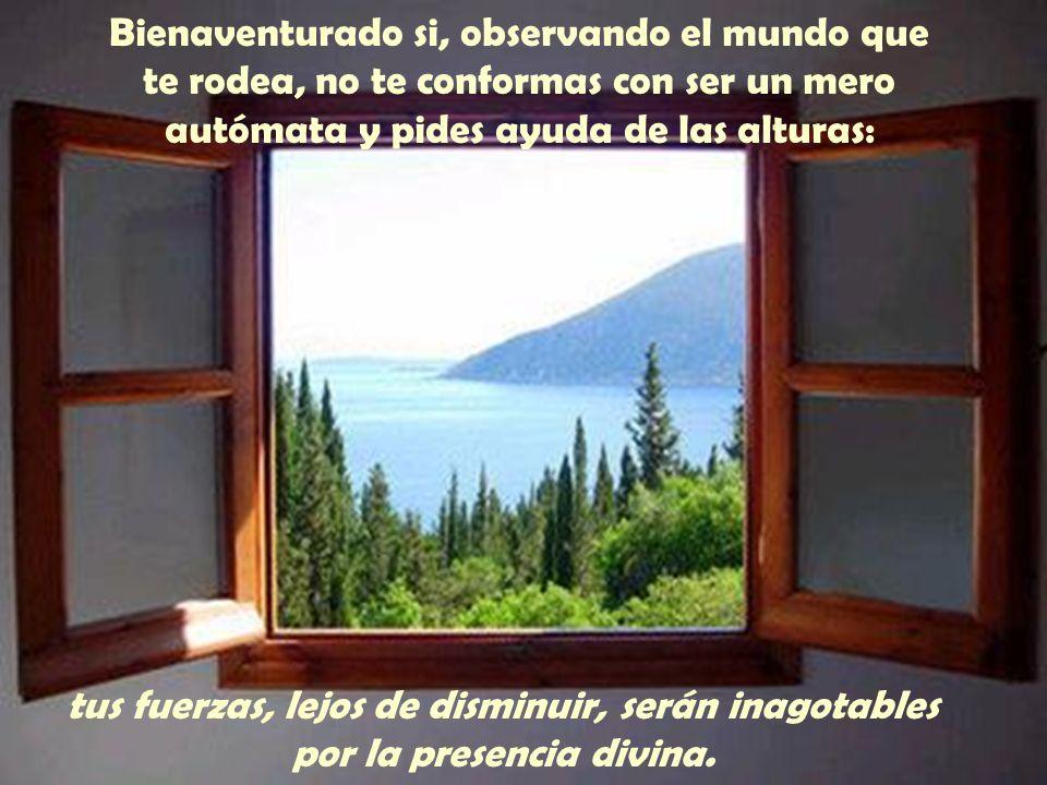 Bienaventurado si, aún mirando al cielo, eres consciente de que tú puedes hacer algo por la tierra: te dará satisfacción el sembrar el amor de Dios en