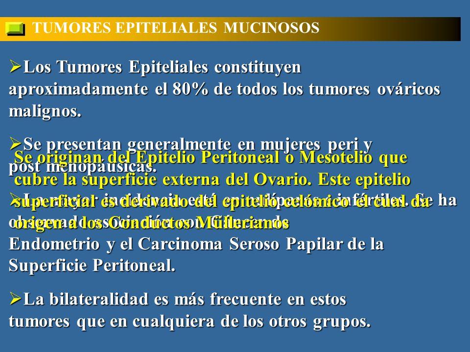Los Tumores Epiteliales constituyen aproximadamente el 80% de todos los tumores ováricos malignos.