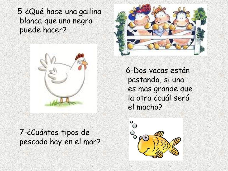 5-¿Qué hace una gallina blanca que una negra puede hacer? 6-Dos vacas están pastando, si una es mas grande que la otra ¿cuál será el macho? 7-¿Cuántos