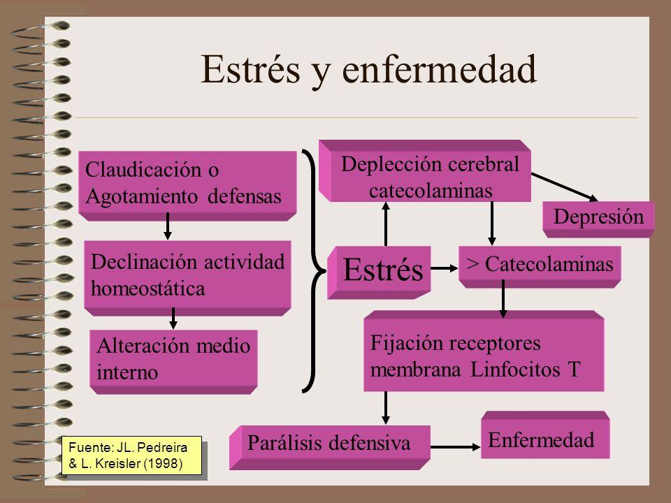 Estrés y enfermedad Claudicación o Agotamiento defensas Declinación actividad homeostática Alteración medio interno Estrés Deplección cerebral catecol