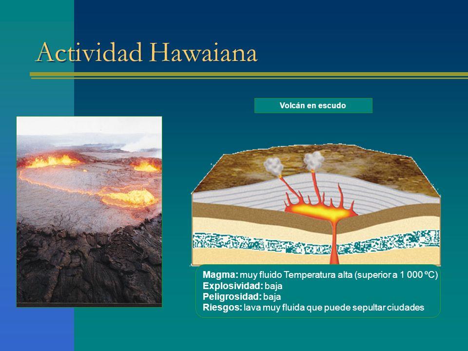 Actividad Hawaiana Magma: muy fluido Temperatura alta (superior a 1 000 ºC) Explosividad: baja Peligrosidad: baja Riesgos: lava muy fluida que puede sepultar ciudades Volcán en escudo
