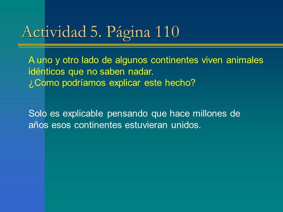 Actividad 5. Página 110 A uno y otro lado de algunos continentes viven animales idénticos que no saben nadar. ¿Como podríamos explicar este hecho? Sol
