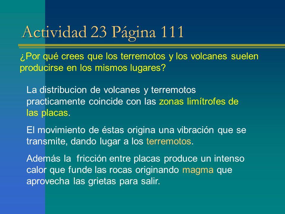 Actividad 23 Página 111 ¿Por qué crees que los terremotos y los volcanes suelen producirse en los mismos lugares? La distribucion de volcanes y terrem
