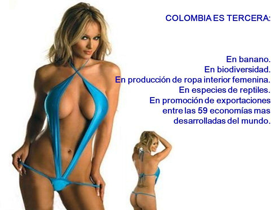 COLOMBIA ES CUARTA: En producción de aceite de palma.